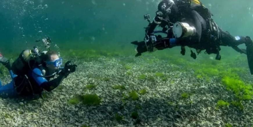 Dalgıçlar Vordonosi adasına daldı