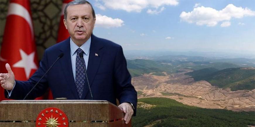 Erdoğan Kaz Dağları için kurmaylarına talimat verdi
